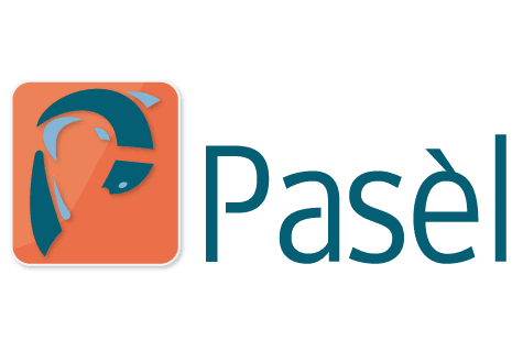 logo Vis Specialist Pasel
